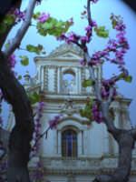 Chiesa della SS. Annunziata  - Ispica (4302 clic)