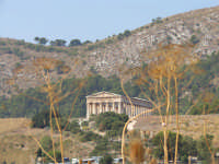 Tempio di Segesta  - Segesta (2438 clic)