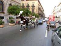 Sposini in carrozzella PALERMO Andrea