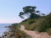 Il giro dell'isola  - Marsala (1182 clic)