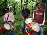 la ddarata a troina:viaggio al bosco in onore di s. silvestro  - Troina (2285 clic)