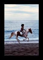 cavalcata sulla spiaggia  - Giardini naxos (7366 clic)