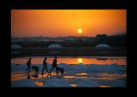 saline al tramonto  - Marsala (4825 clic)