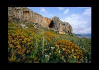 grotta cavalli  - San vito lo capo (3836 clic)
