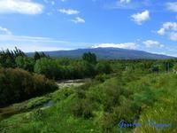 Alcantara con l'Etna sullo sfondo   - Moio alcantara (2477 clic)