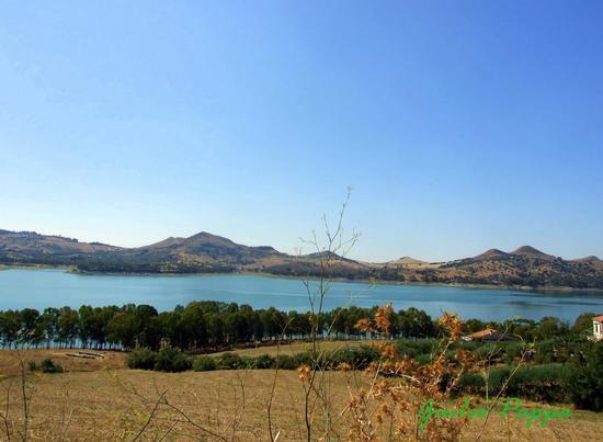 Lago Pozzillo - REGALBUTO - inserita il 01-Sep-14