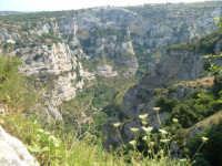Panorama di Cava Grande del Cassibile, si intravede la grotta dei briganti nel versante opposto.  - Avola (1750 clic)
