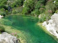 Cava Grande del Cassibile - zona Fosso Calcagno.  - Avola (4583 clic)