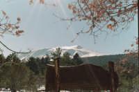 L'Etna dalla caserma pitarrone.  - Etna (4999 clic)