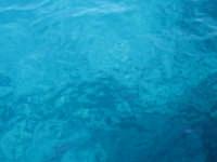 il mare di favignana  - Favignana (6422 clic)