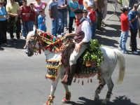 Festa di San Silvestro 'ddarata  - Troina (3463 clic)