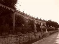 La Passeggiata delle  PALERMO Giovanni Nicolosi