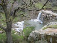 Natura & co.  - Castelbuono (6167 clic)