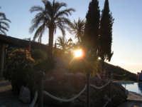 Sole che sta per tramontare dietro gli alberi  - Messina (3474 clic)