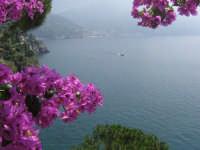 Luogo magnifico...  - Messina (4391 clic)
