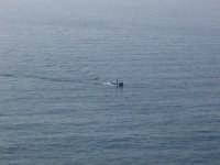 Pescatore in mezzo al mare, a motore acceso...  - Venetico marina (8406 clic)