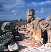 La Valle dei Templi  - Agrigento (2215 clic)