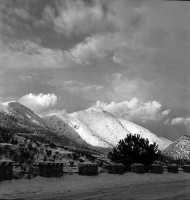 Quando a Palermo cdeva la neve...  Carlo Ireneo Reina Bonetti