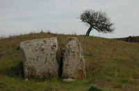 Cave di Cusa 2007  - Campobello di mazara (3055 clic)