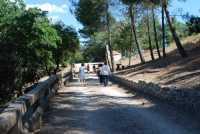 12 luglio 2009 passegiata sul Monte Lucerto  - Chiusa sclafani (3358 clic)