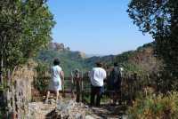 12 luglio 2009 passegiata sul Monte Lucerto  - Chiusa sclafani (3438 clic)