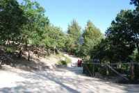 12 luglio 2009 passegiata sul Monte Lucerto  - Chiusa sclafani (3918 clic)