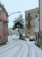 Salita Arcuri sotto la neve 13 febbraio 2009  - Chiusa sclafani (2891 clic)