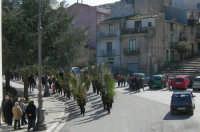 Via S. Caterina Domenica delle Palme 5 aprile 2009   - Chiusa sclafani (4068 clic)
