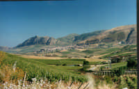 San Cipirello  - San cipirello (6542 clic)