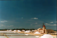 Le saline di Marsala e un mulino a vento  - Marsala (3268 clic)
