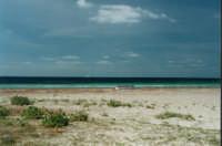 La spiaggia di Marsala  - Marsala (27706 clic)