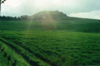 I prati della Valle dello Iato  - San giuseppe jato (6019 clic)