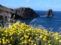 panorama siciliano  - Pantelleria (4779 clic)