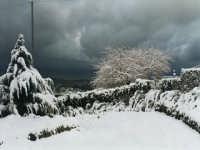 In campagna di Termini Imerese nel'inverno.  - Termini imerese (2913 clic)