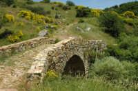 Il ponte di San Brancato  - Petralia sottana (5200 clic)