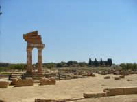 LA VALLE DEI TEMPLI  - Agrigento (1329 clic)