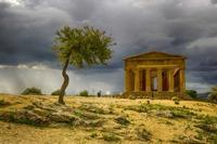 Valle dei Templi   - Agrigento (1158 clic)