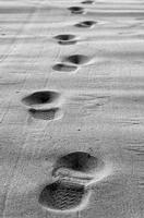 Impronte (505 clic)