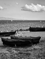 - Messina (1368 clic)