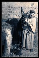 Presepe vivente di Caltanissetta (4487 clic)