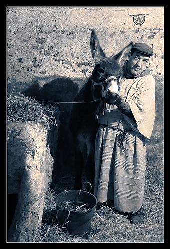 Presepe vivente di Caltanissetta - CALTANISSETTA - inserita il 10-Jan-11