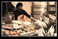 Fruttivendolo    - Caltanissetta (3558 clic)