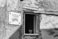 Via Lipari   - Caltanissetta (1170 clic)