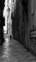 per le vie di Palermo 10 100 1000 Acca Larenti (1821 clic)