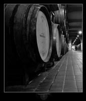 Cantina del Feudo dei Principi di Butera della casa vinicola  Zonin (6486 clic)