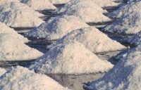 Mucchi di sale pronti per la raccolta  - Trapani (4884 clic)
