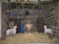 Presepe, Parrocchia S. Lucia  - Mistretta (5170 clic)