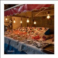 Alla pescheria Pesce fresco  alla pescheria di Catania  - Catania (5761 clic)