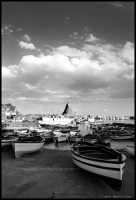 Il porto di Aci Trezza (4014 clic)