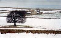 La dama bianca sugli iblei  - Ragusa (3500 clic)